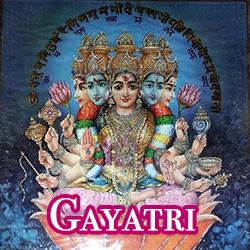 hinds-gayatri