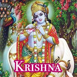hinds-krishna