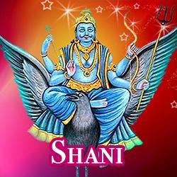 hinds-shani